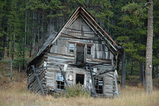 Can the holder of a remainder interest claim a homestead in ...